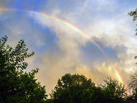 backyard rainbow 2